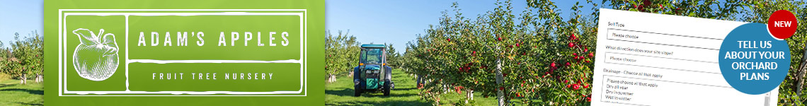 Plan Your Orchard - Tell Us What You're After